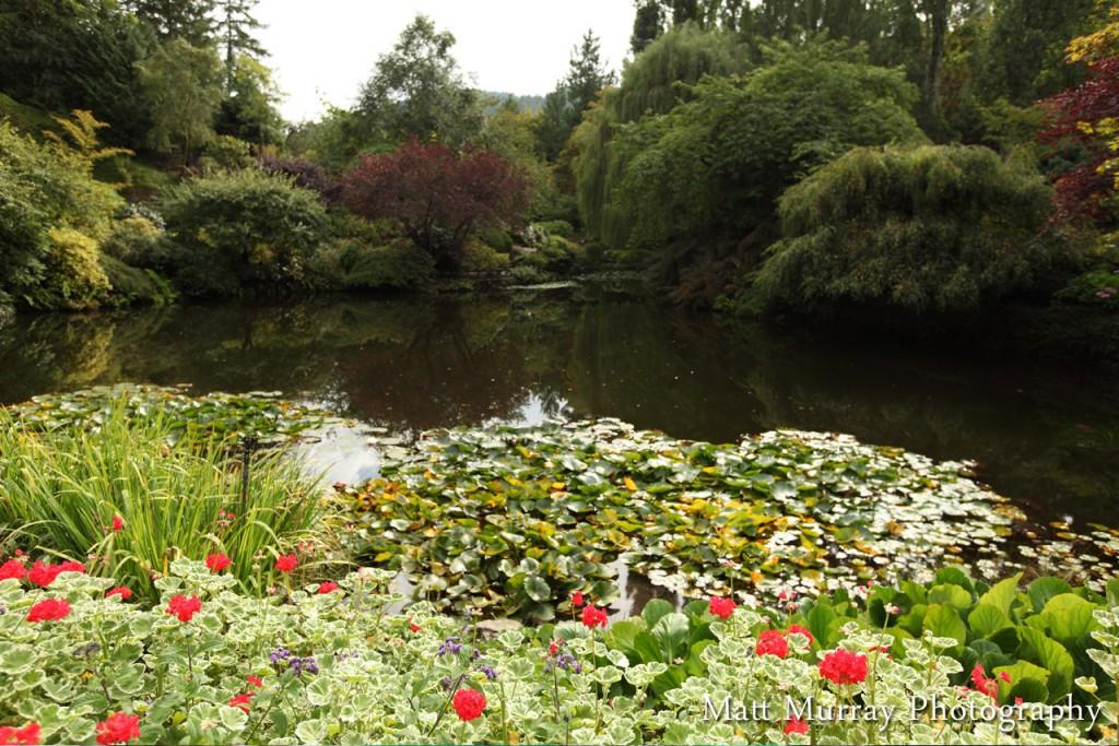 Butchart Gardens Vancouver... </div> <a href=