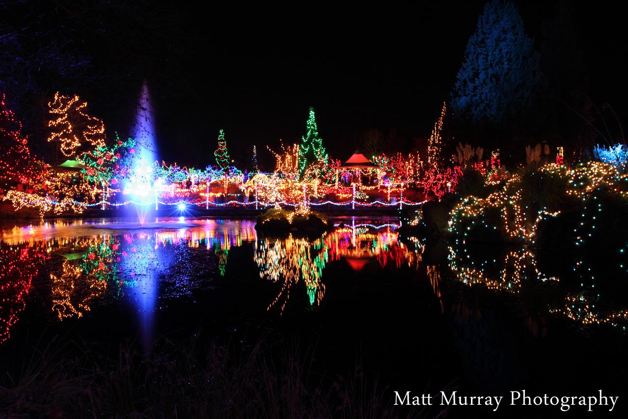 Vandusen Botanical Gardens Vancouver BC · Festival Of Lights VanDusen  Gardens